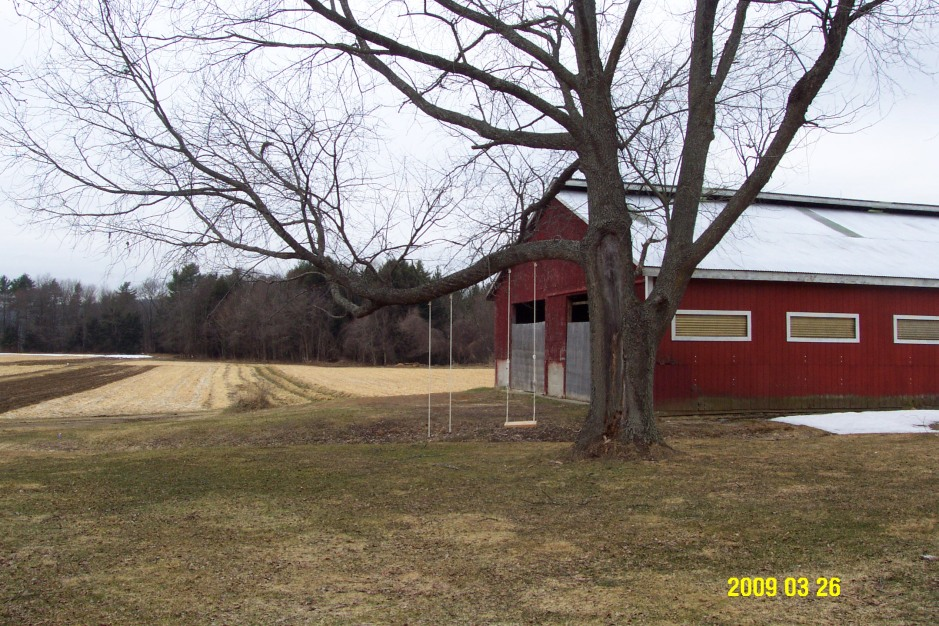 Picadilly field, swings, barn