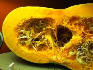 cheese pumpkin